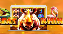 25 No Deposit Free Spins on Great Rhino Slot at Trada Casino
